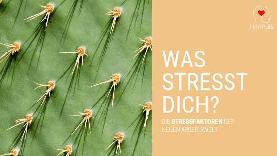 Beitragsbild: Wie kann Stressbewältigung heute aussehen?